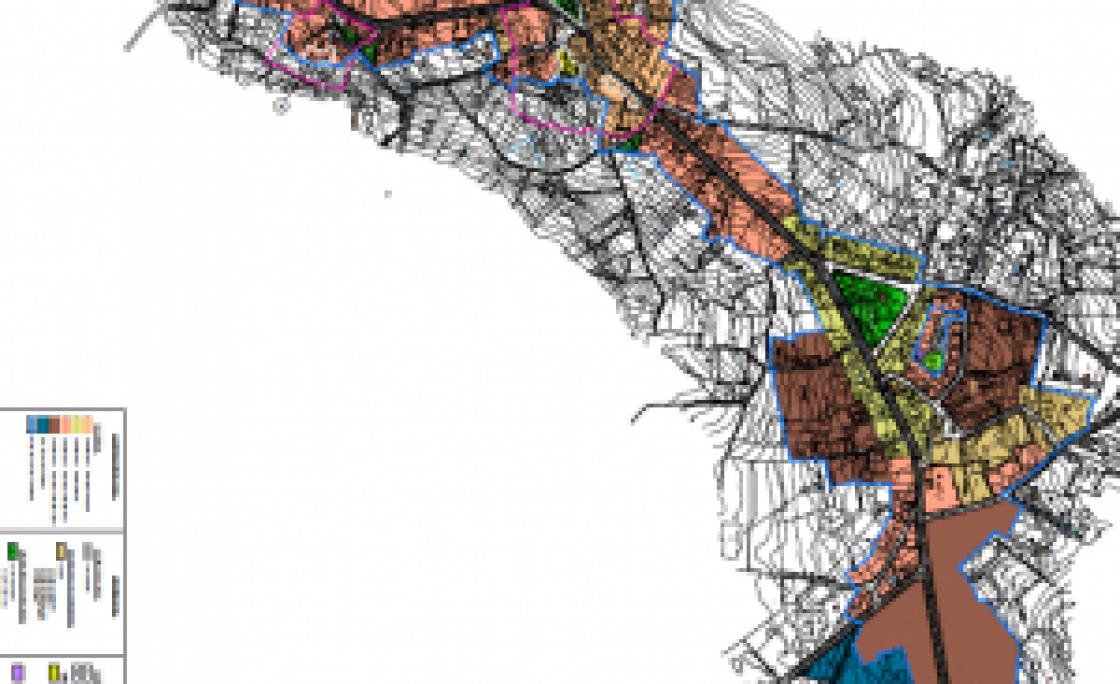 Amoeiro protexerá o seu casco urbano prohibindo a circulación de gando polo mesmo