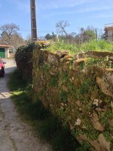 Muro Loureiro