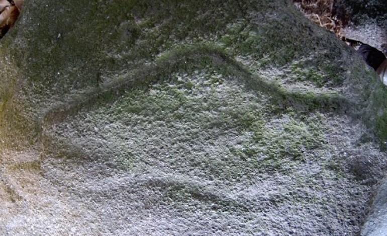 Petrogligo do Abrigo do Raposo